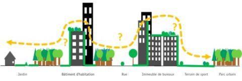 trame verte urbaine